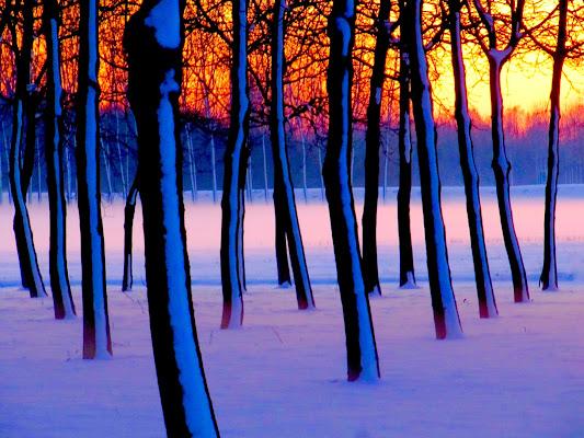 tramonto con neve di mariellaturlon