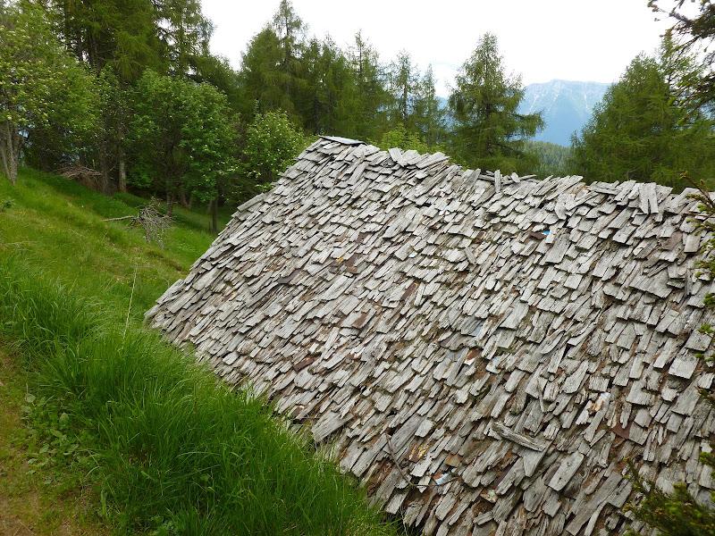 Tetto sostenibile per casa ecologica (tetto di scandole) di Gian78K