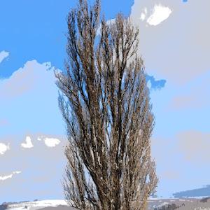 デミオ DE5FS スポルト 2008年式のカスタム事例画像 やま 【10563】さんの2020年12月23日10:10の投稿