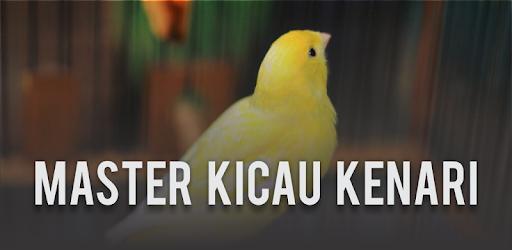 Kicau Kenari Gacor Juara Mp3 Offline On Windows Pc Download Free 2 5 Com Andromo Dev697669 App725711