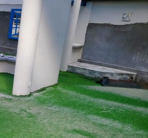Khu vực Resort cỏ nhân tạo có là điều đặc biệt - Một vài lưu ý phần 2
