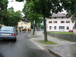 Photo: Traffic Jam!