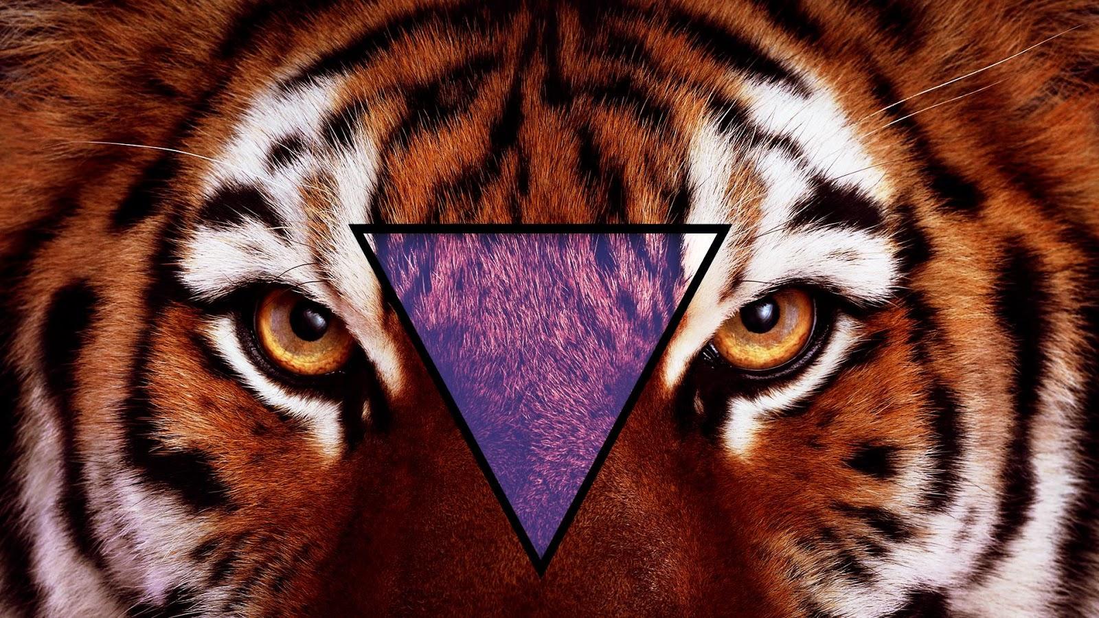 Tiger tumblr hipster wallpaper - photo#17