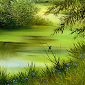 natures wallpaper icon