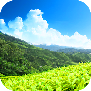 Download hd nature wallpapers for pc - Nature wallpaper apk ...