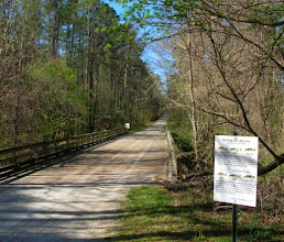 Photo: Crossing the creek on Reedy Creek Trail