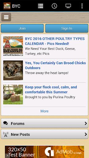 Backyard Chickens BYC