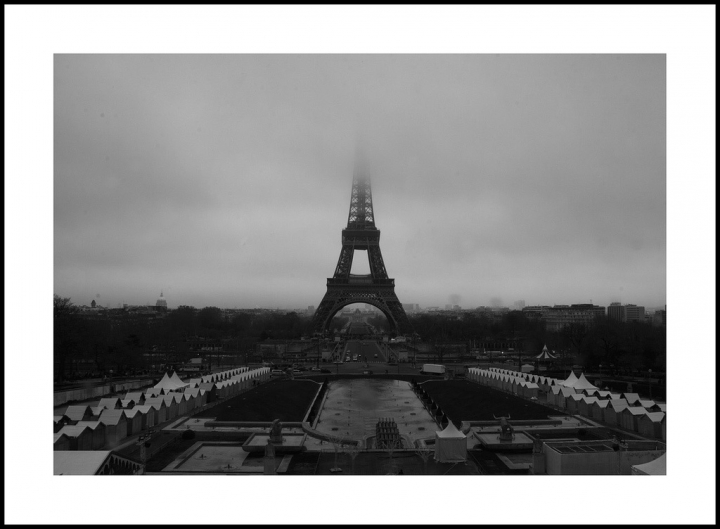 Parigi di Maxi Carota