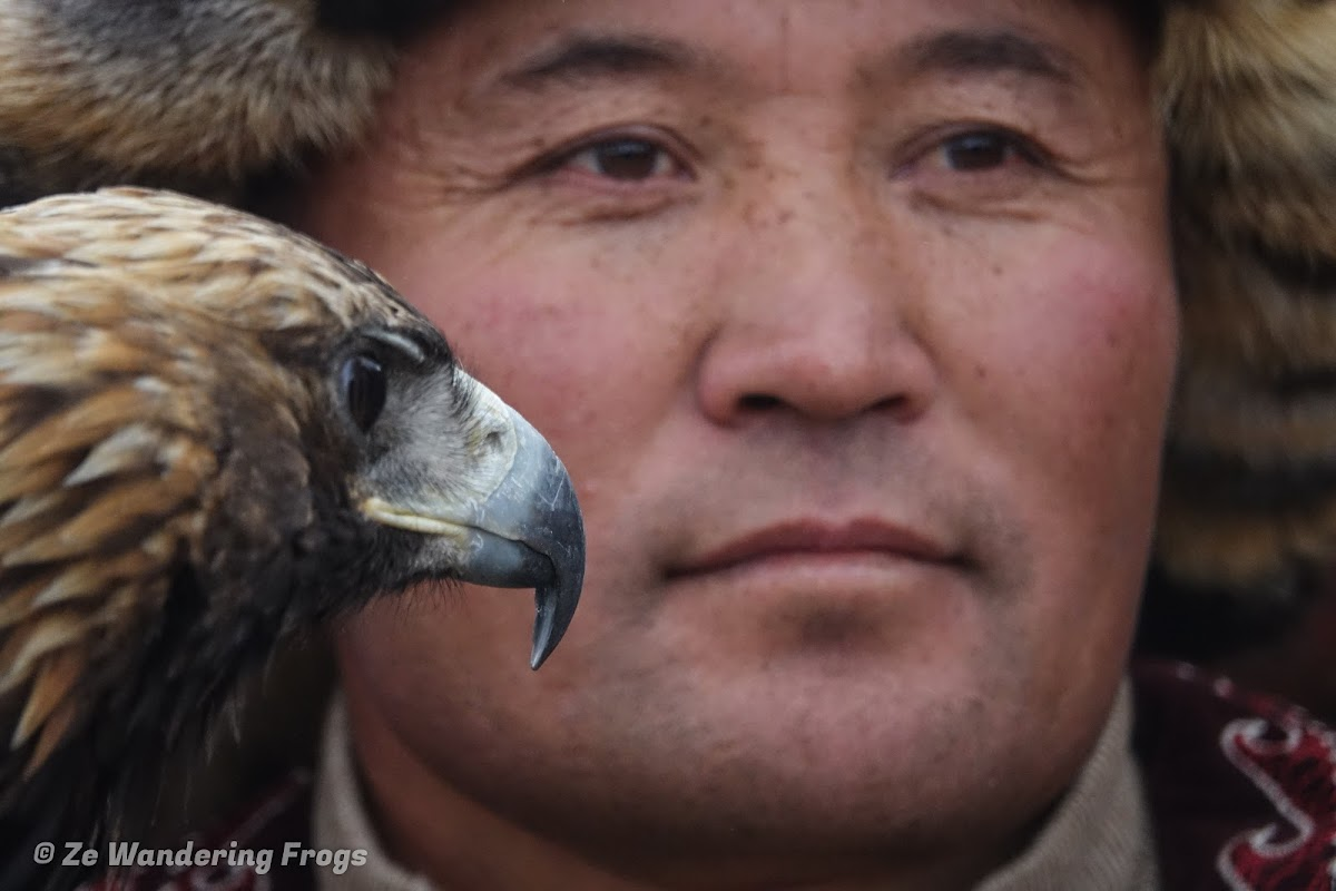Mongolia. Golden Eagle Festival Olgii. Kazakh Hunter and Golden Eagle