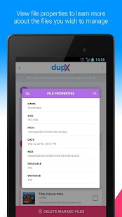 DupX - Duplicate Files Remover - náhled