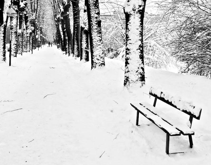 Panchina invernale di Justinawind