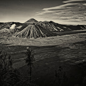 bromo  by Bin Bink - Landscapes Mountains & Hills