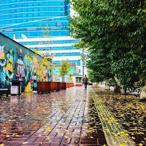 by Эрдэнэцэцэг Баяраа - City,  Street & Park  Street Scenes ( street art, street, cityscape, rain, ubcity )
