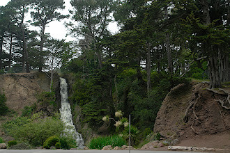 Photo: Golden Gate Park
