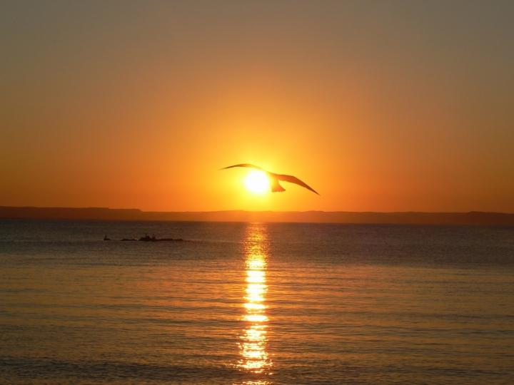 Volando verso il sole di kadanax
