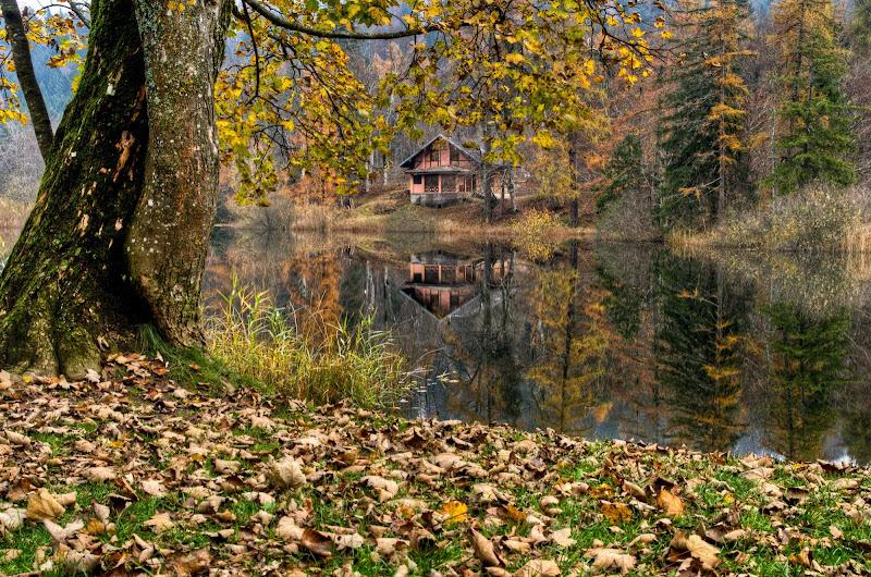 la casa sul lago di homer1108