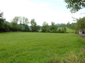 terrain à Saint-Julien-du-Pinet (43)