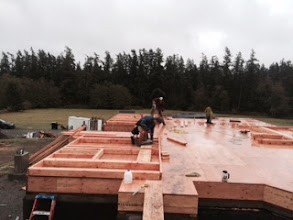 Photo: Today: Framing first floor walls!