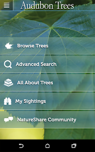 Audubon Trees- screenshot thumbnail