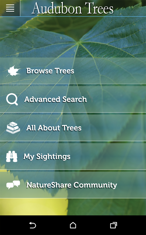 Audubon Trees- screenshot