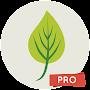 Leaf Wallpapers 4K Pro р HD Backgrounds временно бесплатно