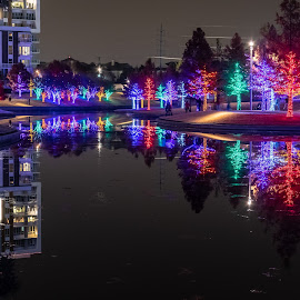 Vitruvian Lights by Bert Templeton - Public Holidays Christmas ( addison, texas, lighting, christmas, vitruvian, lights,  )