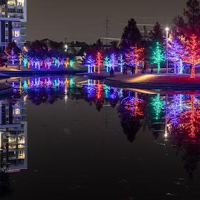 Vitruvian Lights by Bert Templeton - Public Holidays Christmas ( addison, texas, lighting, christmas, vitruvian, lights,  )