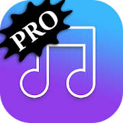 MP3 Music Player - PRO