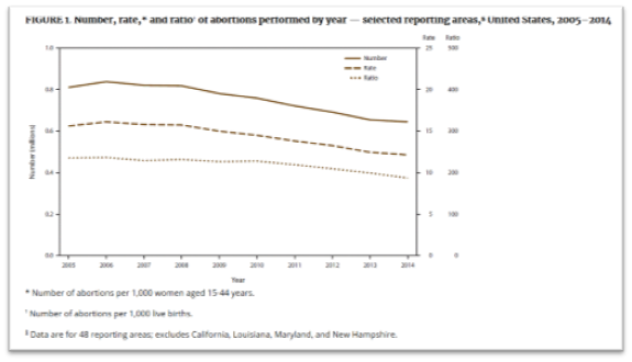 CDC Figure of abortion rate metrics