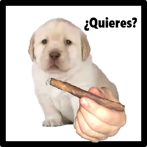 Download Meme Queries Dog Png Gif Base It will be published if it complies with the content rules and our moderators approve it. download meme queries dog png gif base