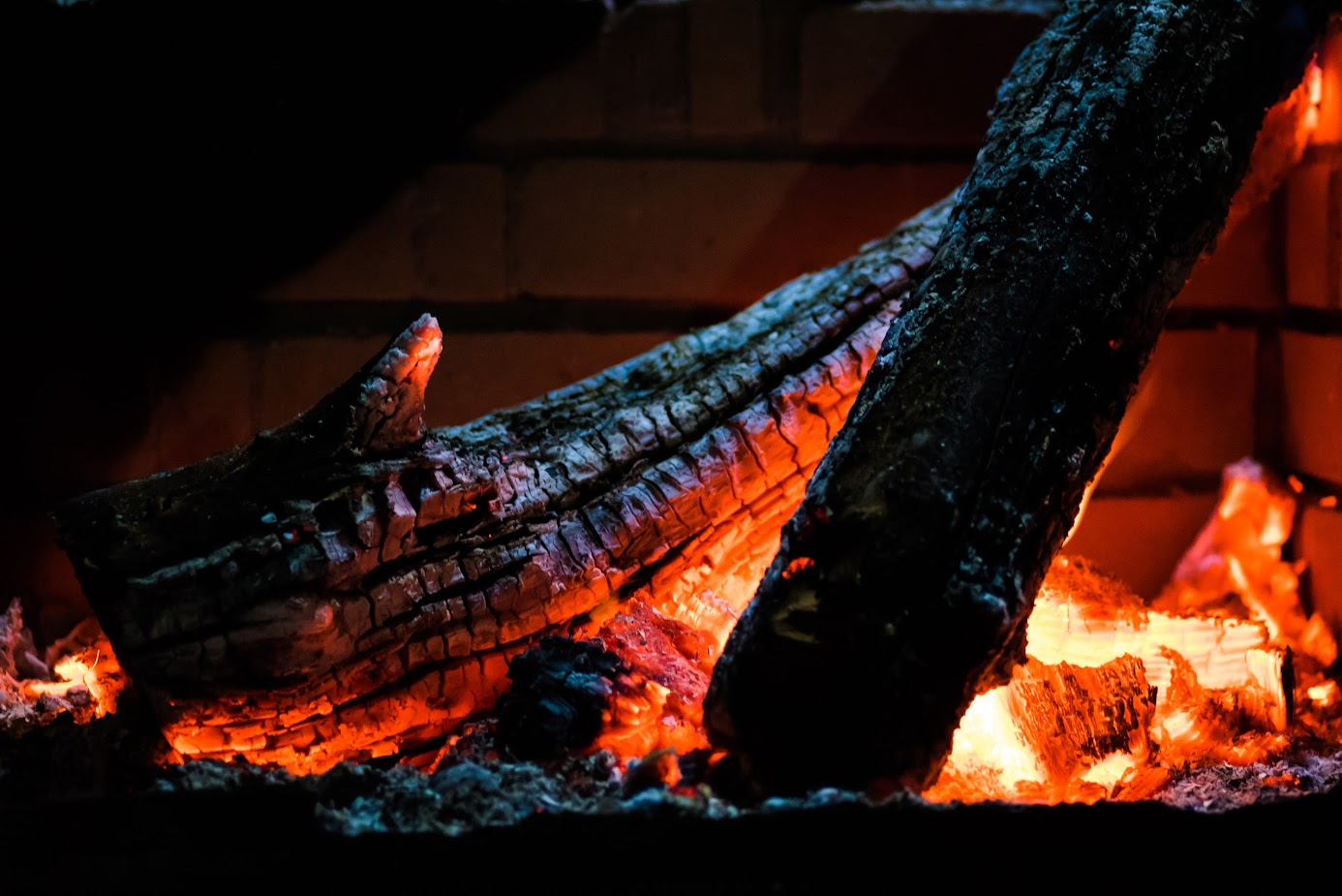Anova Sous Vide Log fire