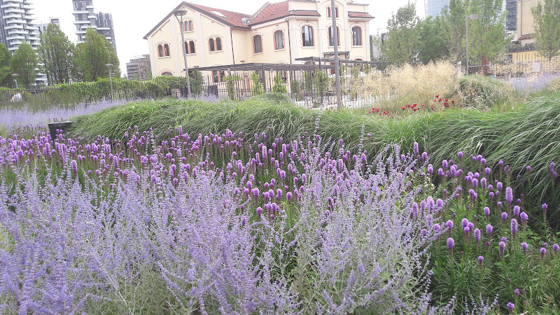 Parco Biblioteca degli Alberi  di archiviobesozzi