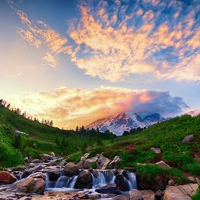 Mt. Rainier Sunset by Zach Blackwood - Landscapes Mountains & Hills ( wild flower, hills, mountain, sunset, mt. rainier, flowers, river )