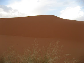 Photo: A dune in the Sahara.