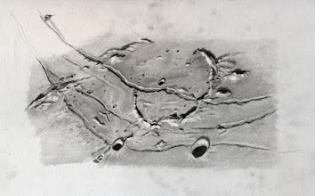 Photo: Le réseau de rainures Hippalus, dans le T406 à 470X, le 12 avril 2014. Durée du croquis à l'oculaire : 3h30.