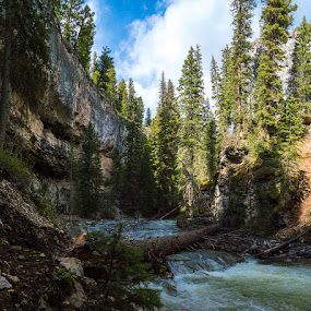 Along Pebble Creek by Thomas Jones - Landscapes Waterscapes ( yellowstone, lamar valley, pebble creek, wyoming, yellowstone national park, infinity prime photography, river )