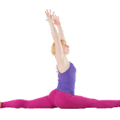 Yoga Stretches for Splits
