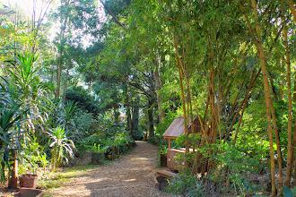 Photo: Laos Reisen, Tad Fan Resort