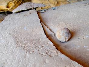 Photo: Cracked boulder metate