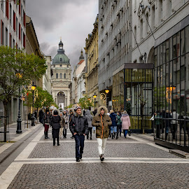 Budapest by Mario Toth - City,  Street & Park  Street Scenes ( clouds, walking, winter, city scene, cold, church, street, buildings, trees, people, light, city street,  )