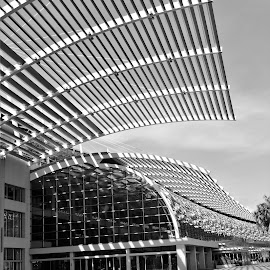 by Koh Chip Whye - Black & White Buildings & Architecture