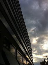 Photo: Lines in the Sunset
