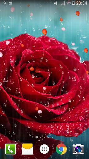 Rose Raindrop Live Wallpaper  screenshots 2