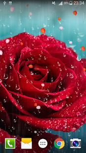 Rose raindrop live wallpaper apps on google play screenshot image altavistaventures Images