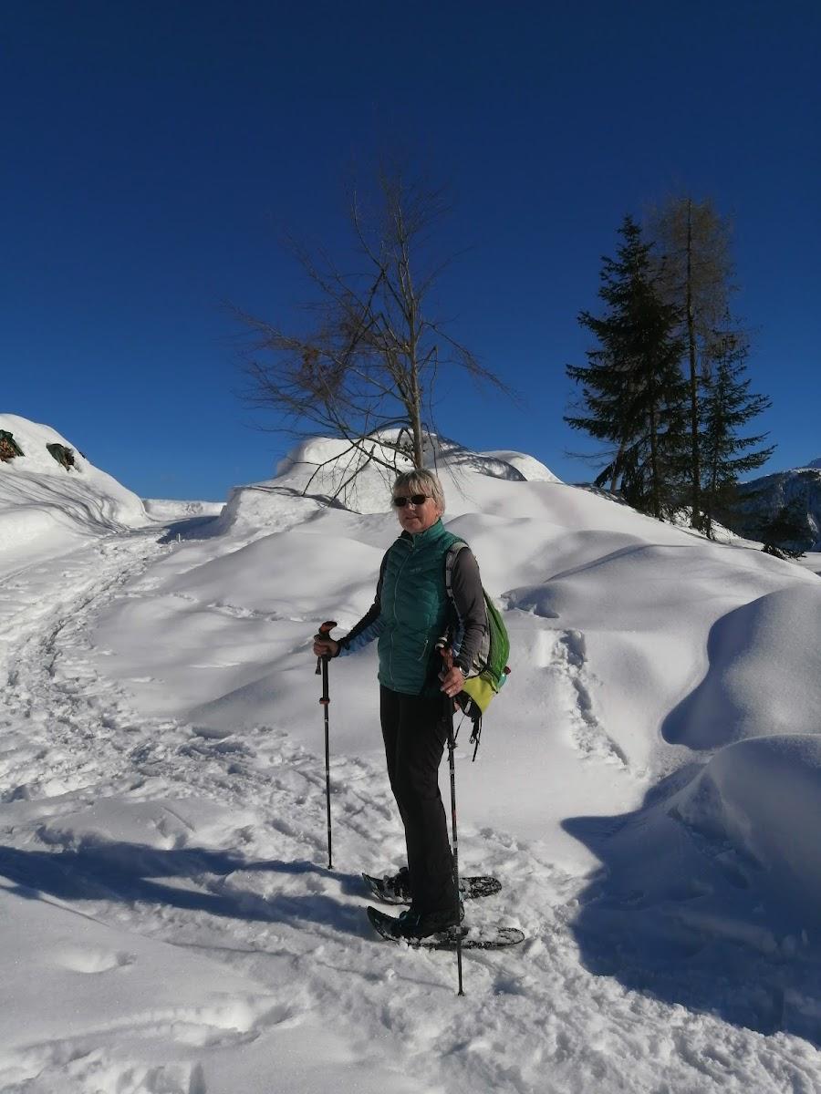 Schneeschuhwandern Richtung Grifitzbühel