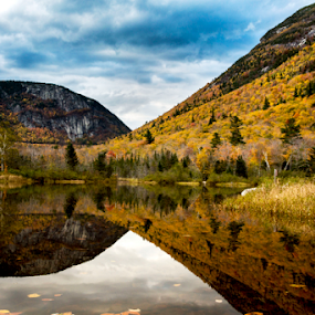 Reflections  by Daphne Tan - Landscapes Mountains & Hills ( reflection, mountain, autumn, colors, forest, river )