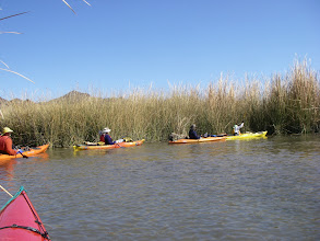 Photo: Small exit from Island Lake through a cane break into a maze of reeds.