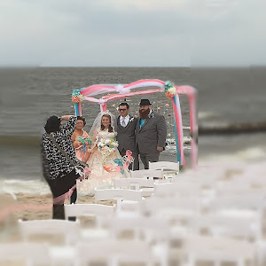 156c-Wedding Party at a Beach Wedding (tilt-shift).jpg