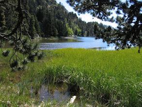 Photo: Capcir:  estany Negre