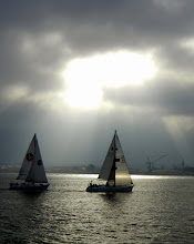 Photo: Sailboats in the San Diego harbor